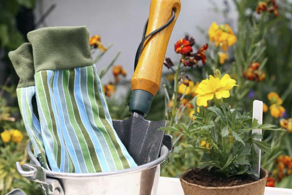 garden summer house ideas