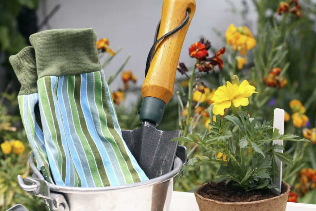 invest in a potting shed