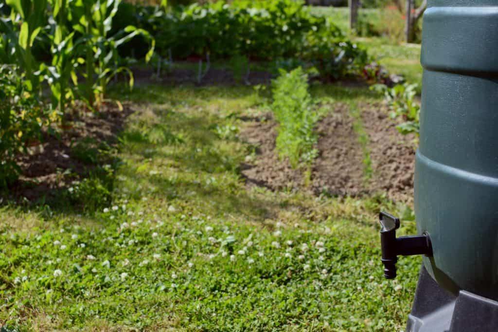 Eco Garden Rooms UK - water butt
