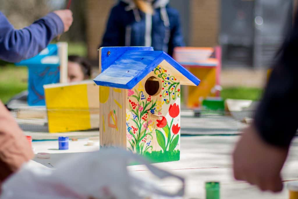 Birdbox brighten up your garden building