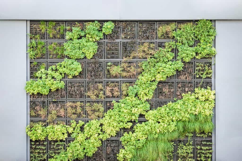 garden trends for 2020 - vertical gardening