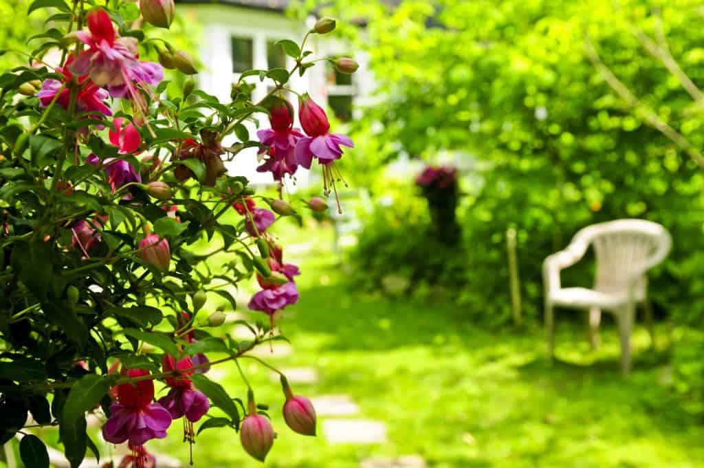 garden sun rooms