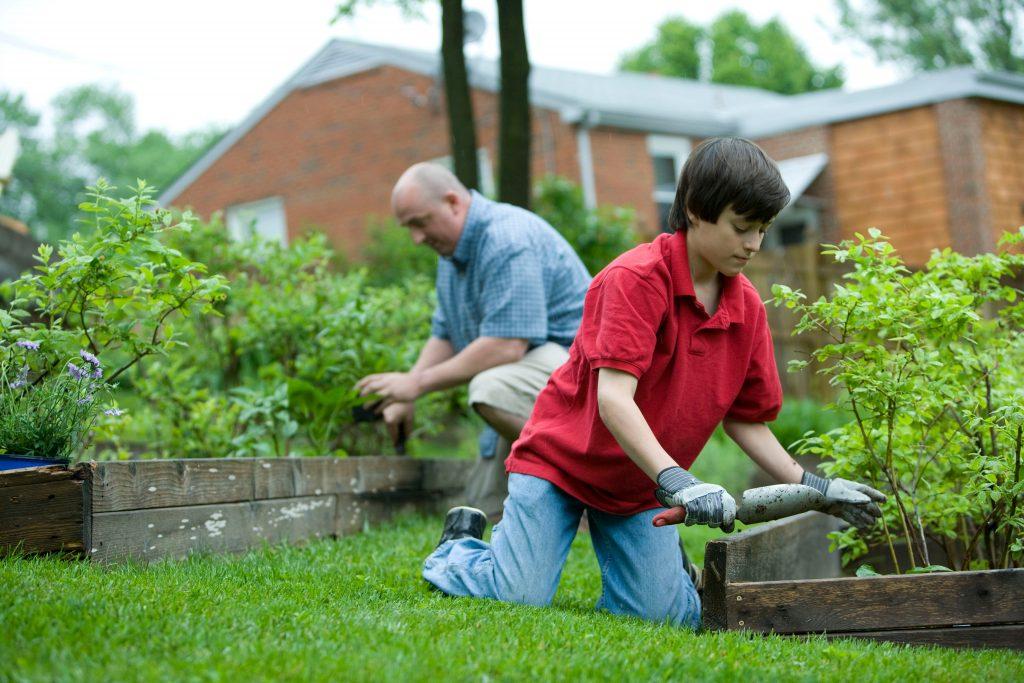 garden room gardening