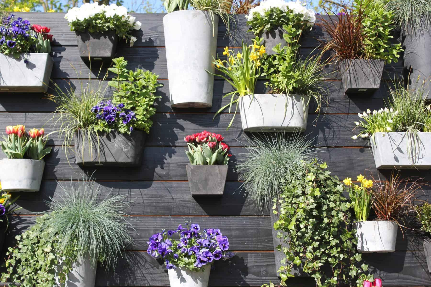 Garden Trends - plant pot wall