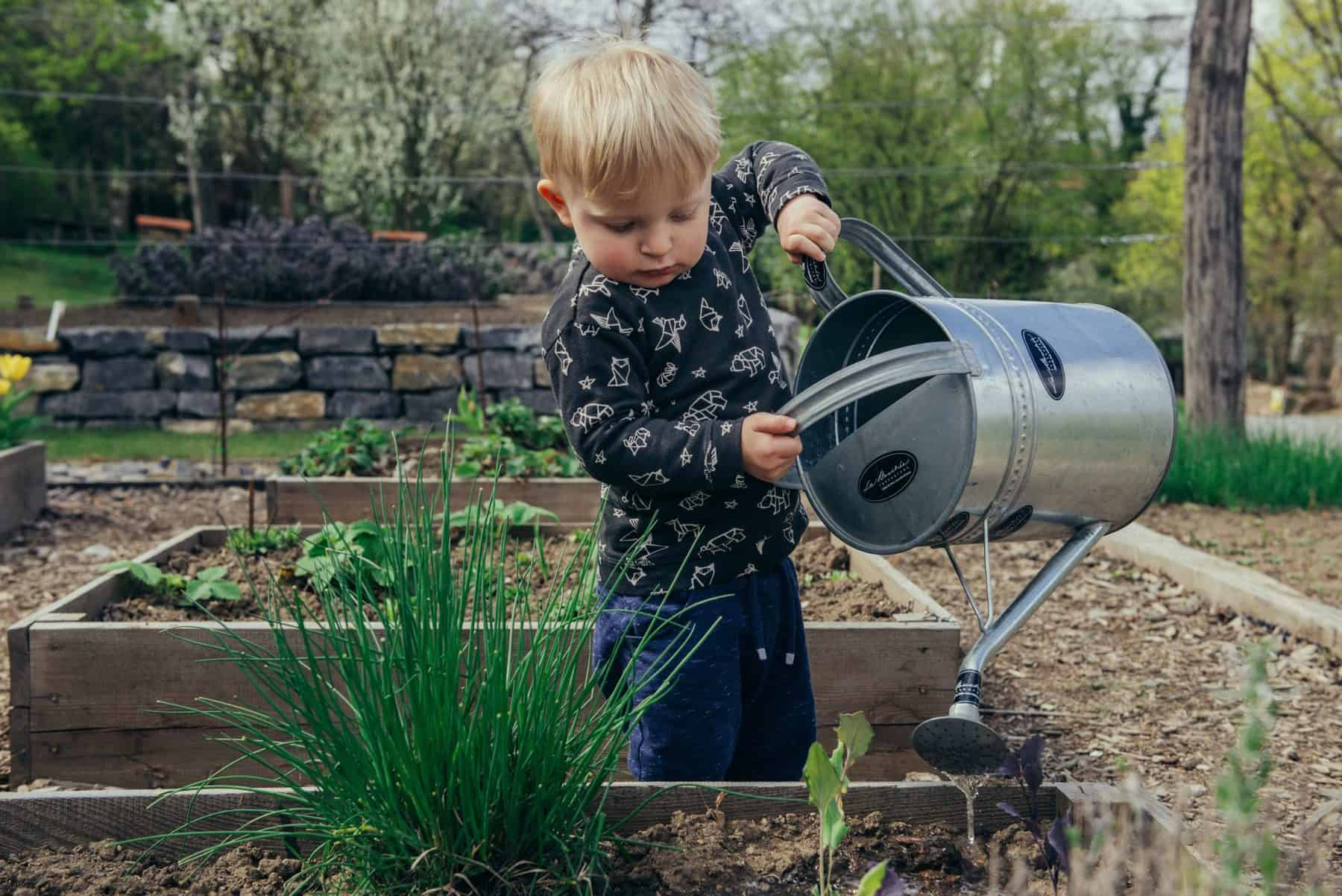Five things to do in your garden with kids this summer