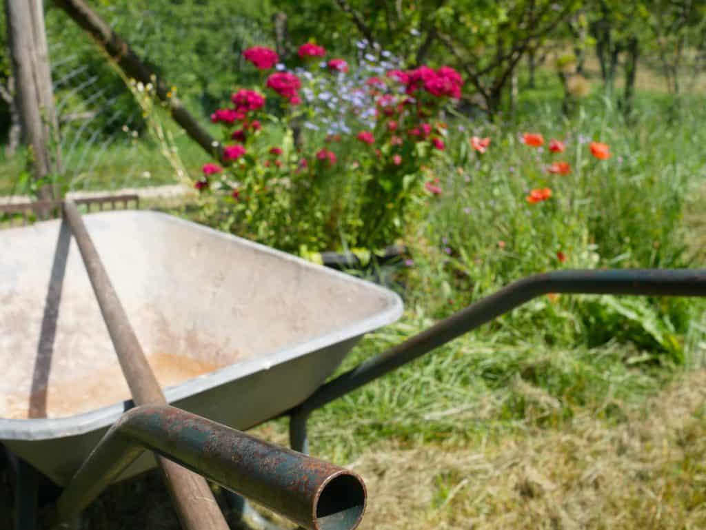 Prepping Your Garden For Autumn